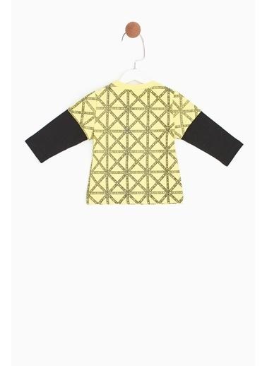 BG Baby Erkek Bebek Desenli T-Shirt Renkli